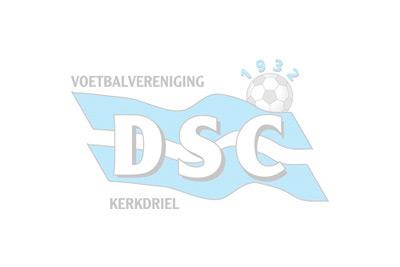 DSC 3